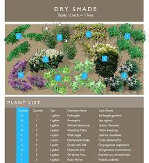 Small Picture 69 best Garden borderpt shadeevergreen images on Pinterest