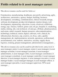 ... 16. Fields related to it asset manager ...
