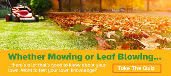 Lawn Mowing Ads Lawn Care Service Provider Questions Askhrgreen