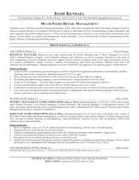 Resume Objective For Retail Amazing Best Marketing Resume Examples Objective For Resumes Objectives