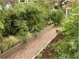 Small Picture Backyards Trendy Raised Vegetable Garden Design Ideas 60 Small