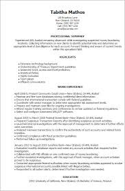 Resume Templates: Aml Analyst