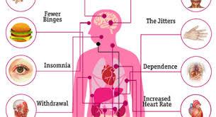 Vyvanse Mg Chart Vyvanse Vs Ritalin Differences Effectiveness Warnings More