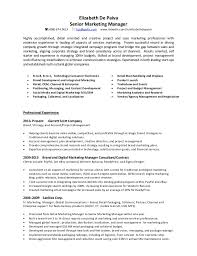 marketing manager resume elizabeth de paiva senior marketing manager resume