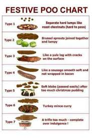 Healthy Stool Chart Festive Poo Chart Poo Chart Stool Chart Sausage Wrap