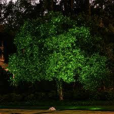 lighting outdoor trees. trees u0026 shrubs lighting outdoor