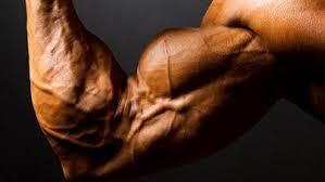Výsledek obrázku pro Aminostar 100% Whey Protein 2000 g