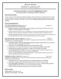 Quick Learner Resume Beautiful Resume Summary Statement Examples Mesmerizing Quick Learner Resume
