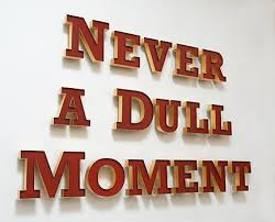 Image result for never a dull moment