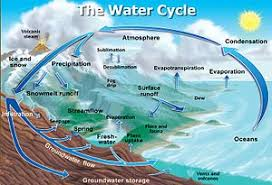 water cycle the water cycle