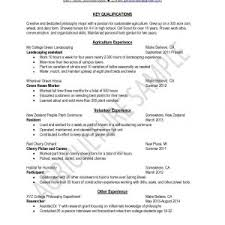 Sample Resume Self Employed Business Owner Awesome Resume Skills