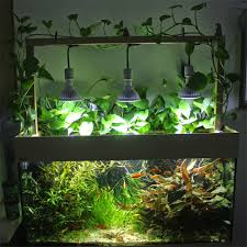do it yourself led lighting. contemporary led do it yourself diy led aquarium lighting system and it led l