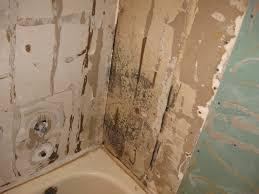 get the 411 on bathroom mold in phoenix
