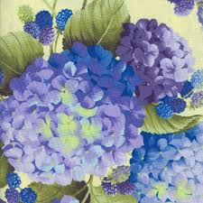 Hydrangeas and Raspberries in Heather by Lakehouse Dry Goods & Scroll Over Image for Close-up! Adamdwight.com