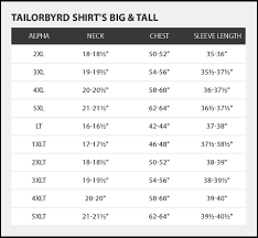 Tailorbyrd Solid Long Sleeve Polo Big Tall Hautelook