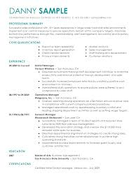 Resume Professional Summary Example 10 Clarifications On Grad Kaštela