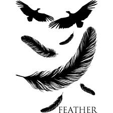 Feather 羽鳥アニマル動物自然音楽ロックパンク