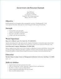 Example Of Federal Government Resumes How To Write A Resume For A Government Job How To Write A Federal