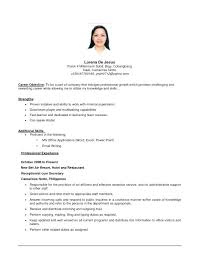 Resume Job Objective Examples Entry Level For Any Is A Creation That