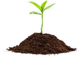 Soil Testing Sullivan County Conservation District