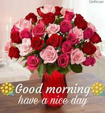 lovely good morning images with red rose flowers