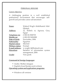 Cv Template Copy And Paste Resume Pdf Download