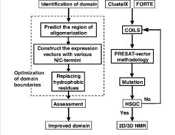 Flow Chart For Optimizing Domain Boundaries By Minimizing