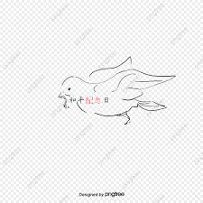 無料ダウンロードのための手描き鳩 ハトの挿絵 飛び回る鳩 伝書鳩png画像素材