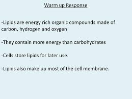 hw revise your essay warm up ppt video online  warm up response lipids are energy rich organic compounds made of carbon hydrogen and