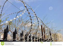 barbed wire fence prison. Barbed Wire Fence At The Prison T