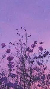 purple aesthetic ...