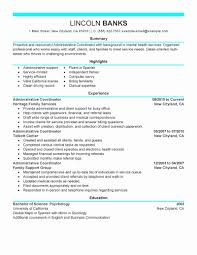 Sample Resume It Project Coordinator Fresh Project Analyst Resume ...