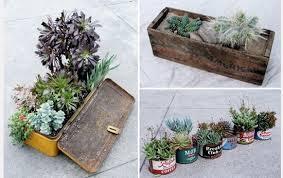 indoor gardening ideas. 5 More Ideas For Your Indoor Garden Gardening