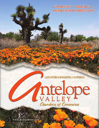 antelope valley ca community profile by townsquare publications antelope valley ca community profile by townsquare publications llc issuu