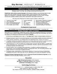 Qa Manager Resume Manager Resumes Software Qa Manager Resume