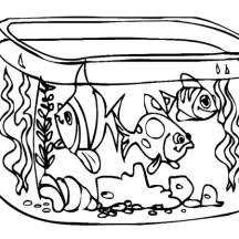 Small Picture Fish Tank NetArt