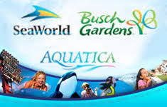 how much are busch garden tickets. Cool Ideas How Much Is Busch Garden Tickets Innovative Gardens SeaWorld Ticket Prices Rise Image Are L