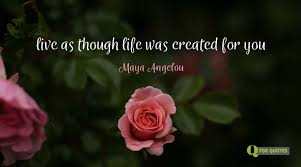 40 Maya Angelou Quotes That Will Make You Feel Warm Inside Mesmerizing Maya Angelou Quotes