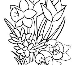 Flower Coloring Pages Rose Printable Spring Flowers For Adults