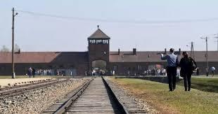 Empörung Amazon Verkaufte Christbaumschmuck Mit Auschwitz