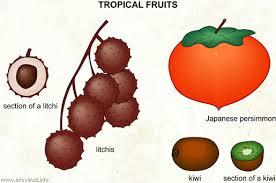 tropical fruit names. Contemporary Fruit Tropical Fruits 3 With Fruit Names E
