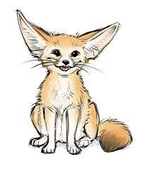 fennec fox drawing. Contemporary Fox Fennec Fox Drawing Beautiful Art With E