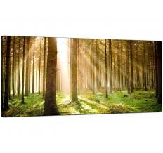 large green forest woodland sunlight trees modern canvas art 120cm 1042 on canvas wall art large uk with green canvas pictures prints wall art free delivery