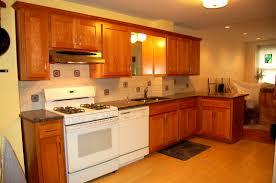 Refinish Kitchen Cabinets Kit Kitchen Cabinets Refinished Magnificent Cabinet Refinishing Kit
