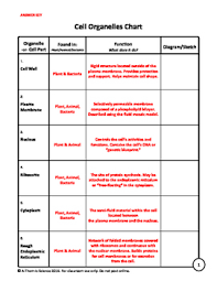 Cell Organelles Structure Function Chart Cell Organelles Information Chart