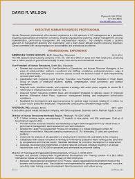 Sales Associate Resume Sample Elegant Sales Associate Job Resume