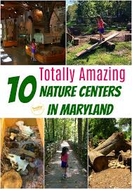 10 nature centers in maryland that will spark your child s love of nature