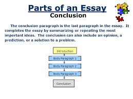organizing an academic essay introduction conclusion body 7 parts of an essay
