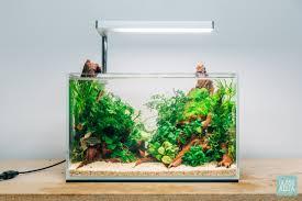 Ultum Nature Systems Planted Cube Betta Tank Nano Aquarium