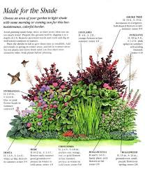 Small Picture Best 25 Shade garden plants ideas that you will like on Pinterest